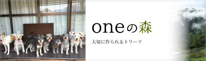 oneの森